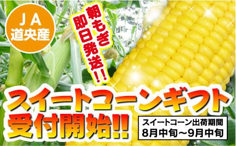 corn01_s
